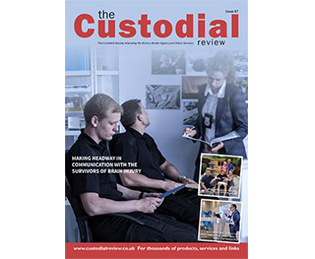 Custodial Review - about